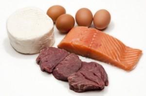 מבחר מאכלים עתירי חלבונים